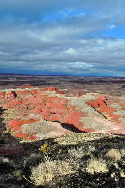 Photograph - Painted Desert Magic Hour by Kyle Hanson