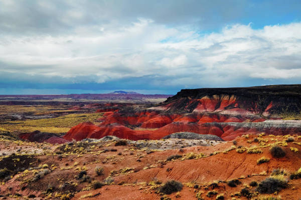 Photograph - Painted Desert Petrified Forest by Kyle Hanson