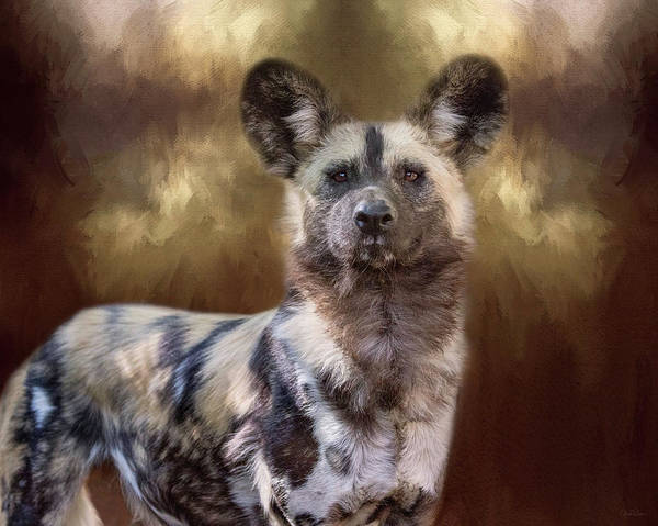Digital Art - Painted Dog Portrait II by Nicole Wilde