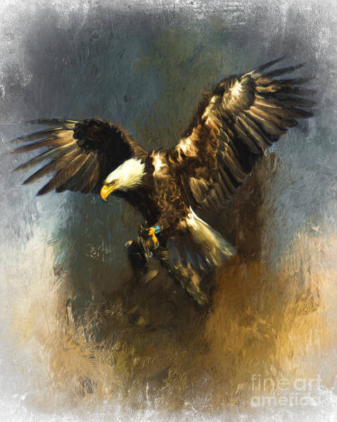 Photograph - Painted Eagle by Eleanor Abramson