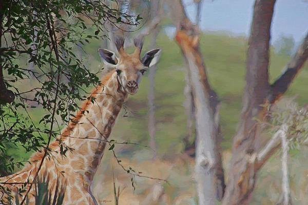Photograph - Painted Giraffe by Ericamaxine Price