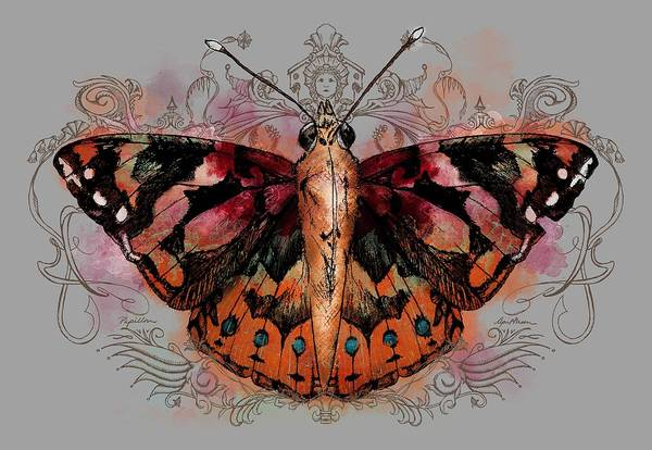 Digital Art - Painted Lady II by April Moen