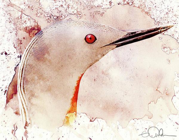Digital Art - Painted Loon by Gloria Anderson