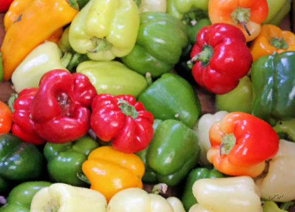 Photograph - Painted Peppers by Kristin Elmquist