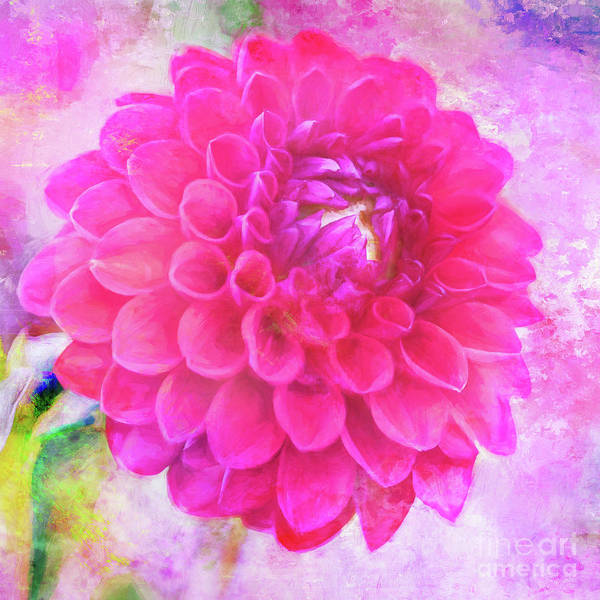 Photograph - Painted Pompom Dahlia With The Works by Anita Pollak