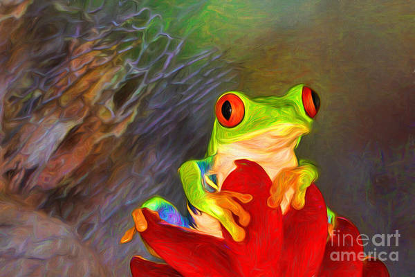 Photograph - Painted Red Eyed Tree Frog by Mary Lou Chmura