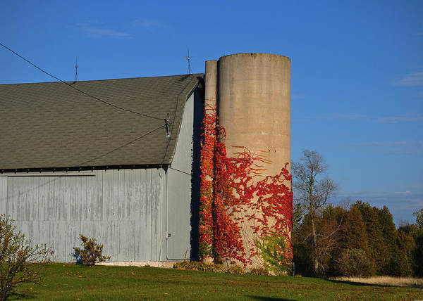 Photograph - Painted Silo by Tim Nyberg