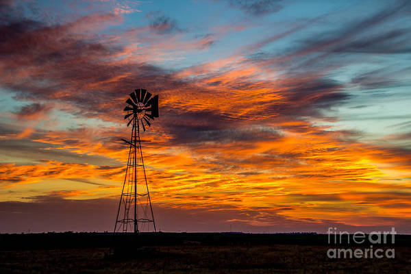 Photograph - Painted Sky by Jim McCain