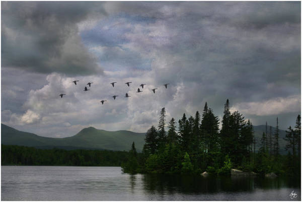 Photograph - Painted Sky Over Jericho Lake by Wayne King