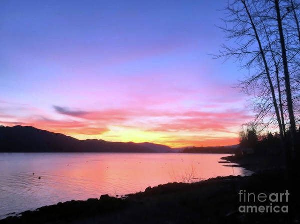 Photograph - Painted Sky by Victor K
