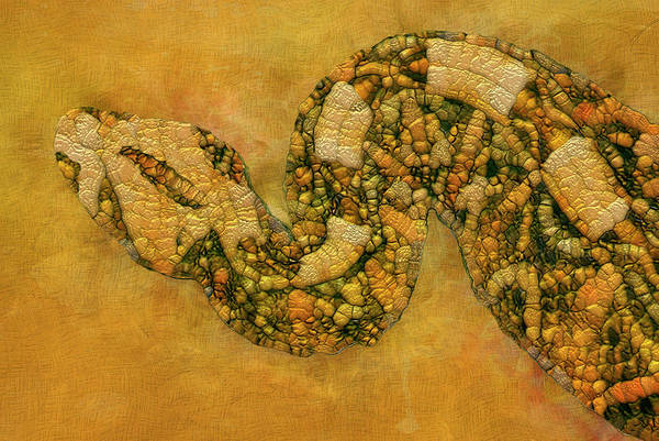 Merge Painting - Painted Snake by Jack Zulli