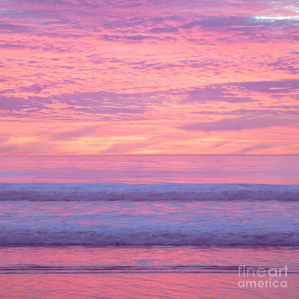 Photograph - Painted Sunset by Ana V Ramirez