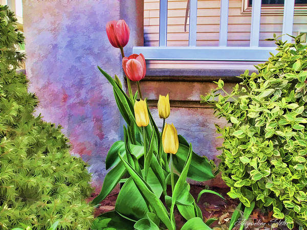 Digital Art - Painted Tulips by Jacqueline Sleter