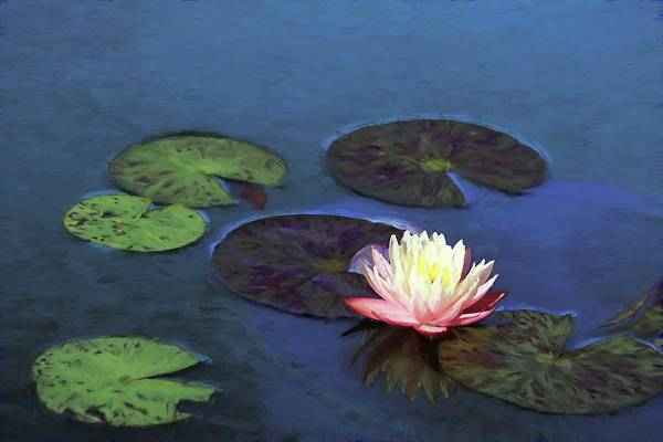 Photograph - Painted Water Lily And Lily Pads by Carol Montoya