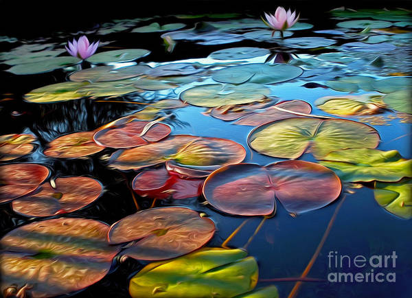 Wall Art - Photograph - Painterly Lily Pads At Sunset By Kaye Menner by Kaye Menner