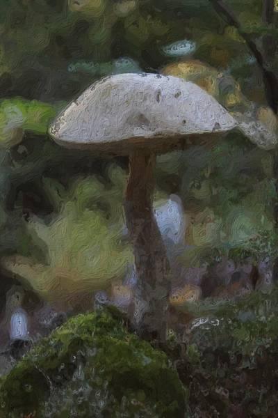 Funghi Painting - Painterly Mushroom by Modern Art