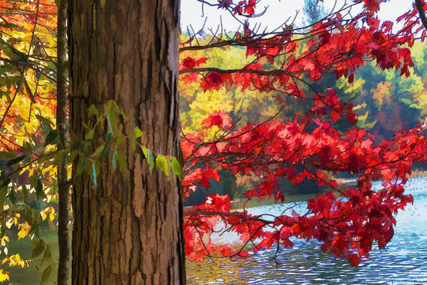 Photograph - Painterly Rendition Of Red Leaves And Tree Trunk In Autumn by Randall Nyhof