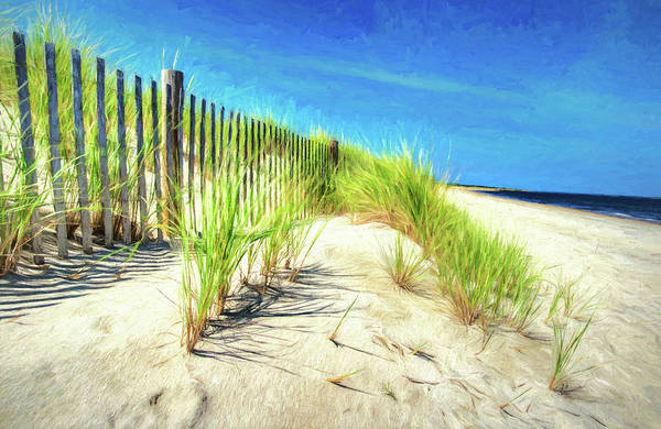 Photograph - Painterly  Waterfront Dune Grass by Gary Slawsky