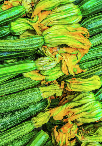 Photograph - Painterly Zucchini by Gary Slawsky