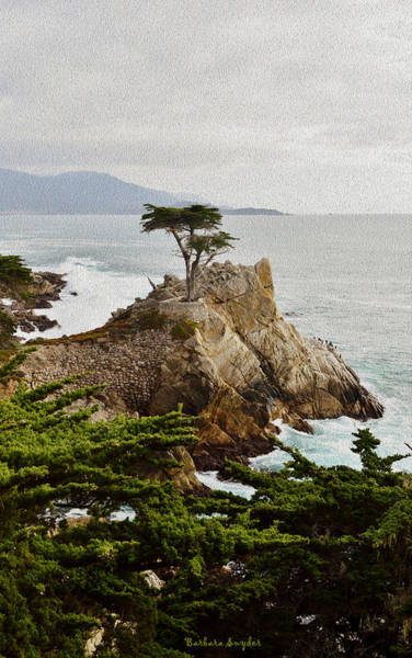 Wall Art - Painting - Painting Lone Cypress Monterey by Barbara Snyder