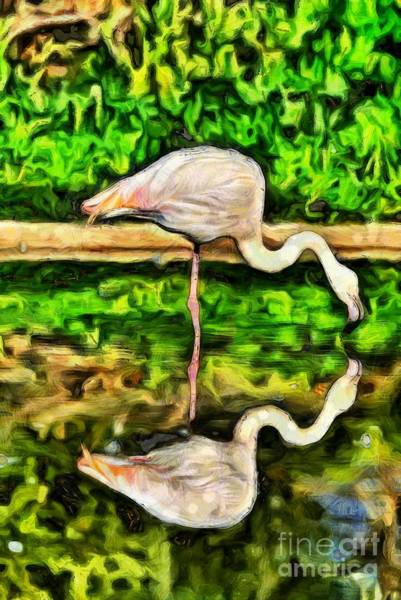 Phoenicopterus Roseus Wall Art - Painting - Painting Of Greater Flamingo by George Atsametakis