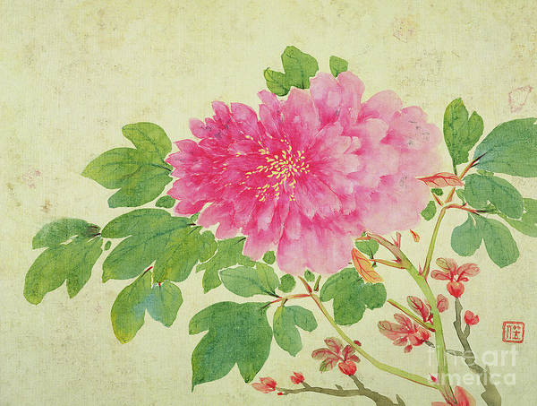 Far East Painting - Painting Of Peonies by Jiang Yu