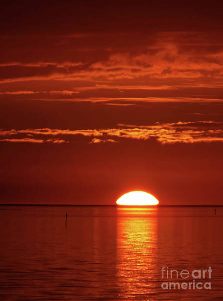 Cedar Key Photograph - Painting The Sky Red by D Hackett