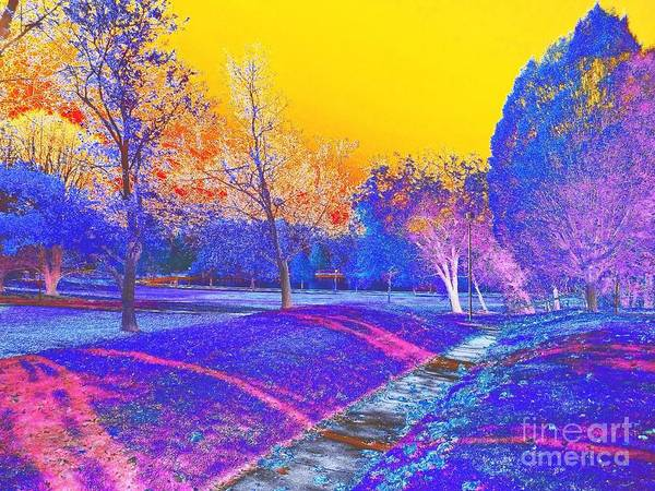 Millrace Wall Art - Photograph - Painting With Shadows by Scott D Van Osdol