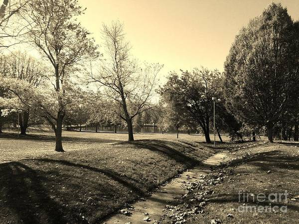 Millrace Wall Art - Photograph - Painting With Shadows - Sepia by Scott D Van Osdol