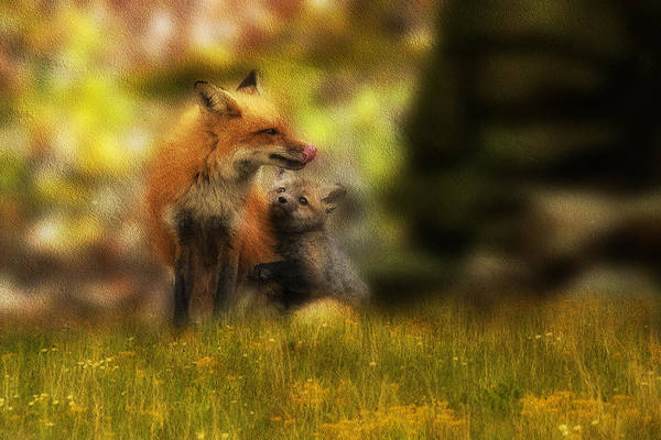 Photograph - Paintography - Little Loven With Dad by Dan Friend