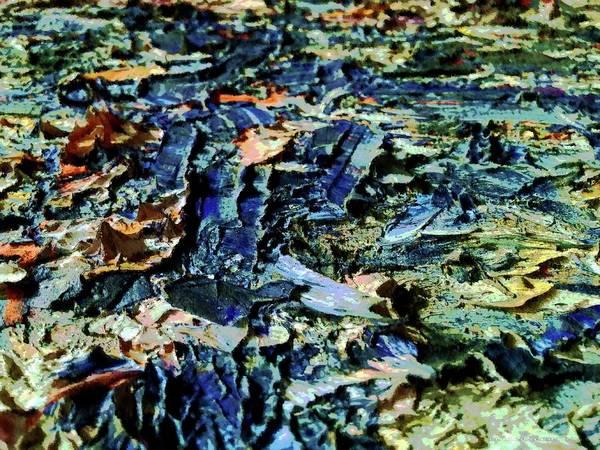 Digital Art - Paintscape One by Vincent Green