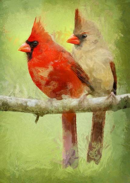 Digital Art - Pair Of Cardinals by Charmaine Zoe