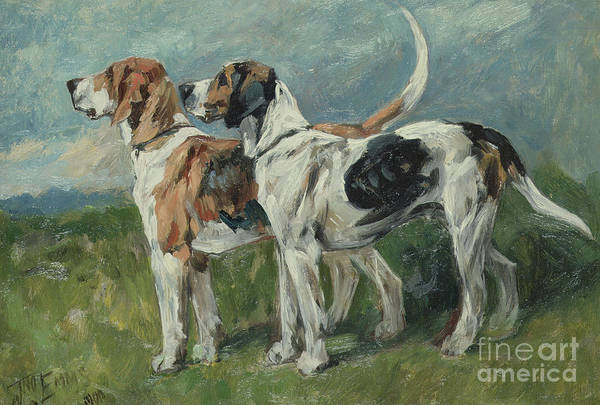 Painting - Pair Of Foxhounds, 1900 by John Emms