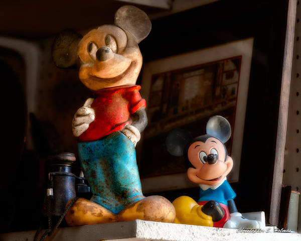 Photograph - Pair Of Mickies by Christopher Holmes