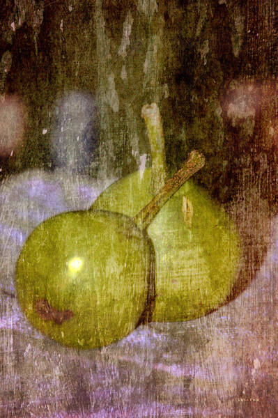 Photograph - Paired Pears by Lesa Fine