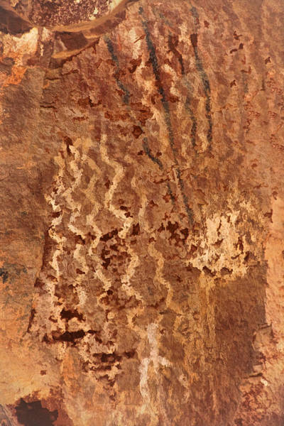 Photograph - Palatki Pictographs3 Pnt by Theo O'Connor