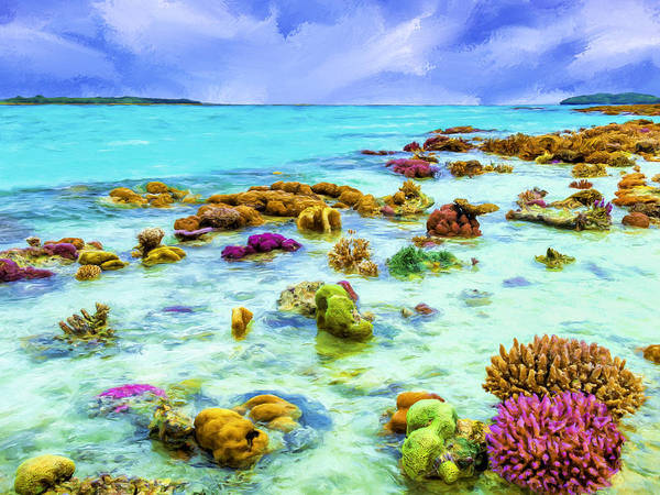 Painting - Palau Reef At Low Tide by Dominic Piperata