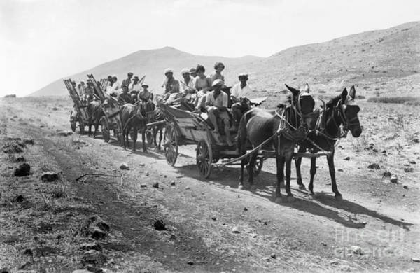Photograph - Palestine Colonists, 1920 by Granger