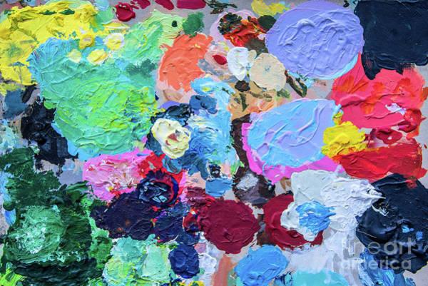 Oil Paint Photograph - Palette by Delphimages Photo Creations