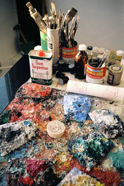 Photograph - Palette by Frank DiMarco