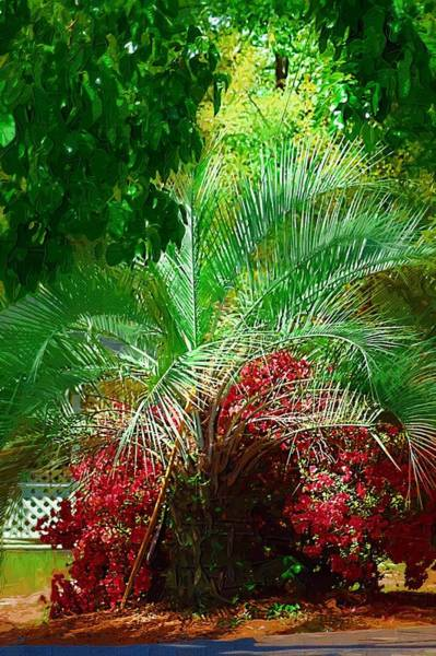 Photograph - Palm And Azaleas by Donna Bentley