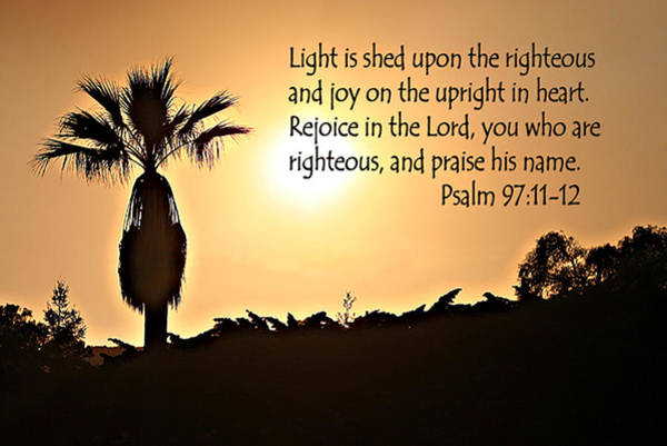 Bible Quotes Photograph - Palm At Sunset Psalm 97 Verses 11-12 by Linda Phelps