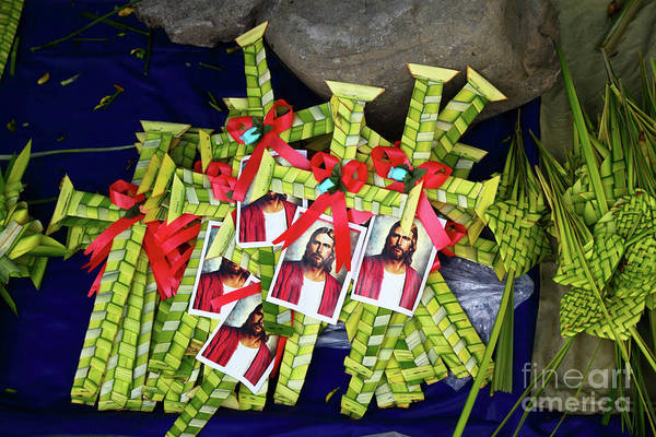 Photograph - Palm Frond Crosses For Sale For Palm Sunday by James Brunker