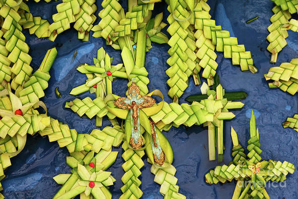 Photograph - Palm Frond Crucifix And Crosses For Palm Sunday by James Brunker