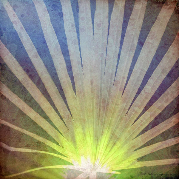 Wall Art - Photograph - Palm Frond Light by Marvin Spates