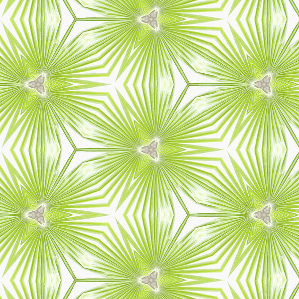 Palm Frond Digital Art - Palm Frond Play by Roleen Senic