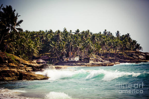 Photograph - Palm On Coast And Big Wave And Rocky Cliffs On The Coast Of The Indian Ocean Kerala India by Raimond Klavins