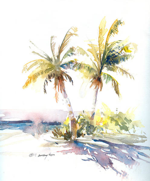 Coconut Painting - Palm Shadows by P Anthony Visco