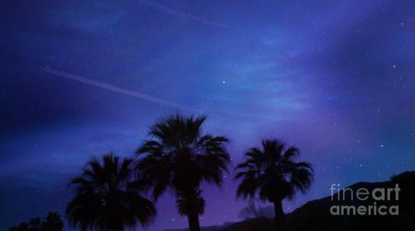 Photograph - Palm Springs by Jenny Revitz Soper