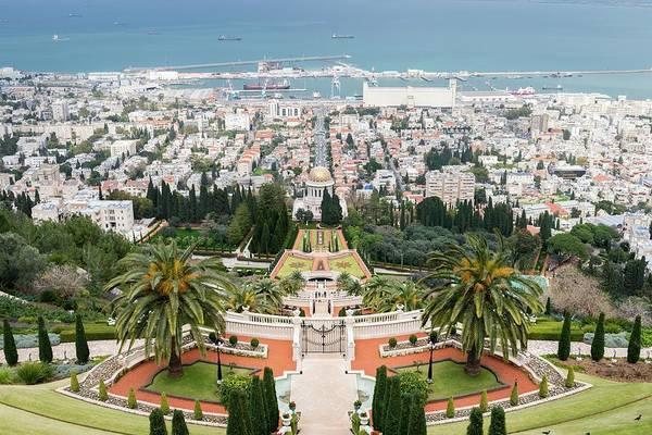Photograph - Palm Tree In Bahai Garden, Bahai Gardens, Haifa, Israel by Alexandre Rotenberg